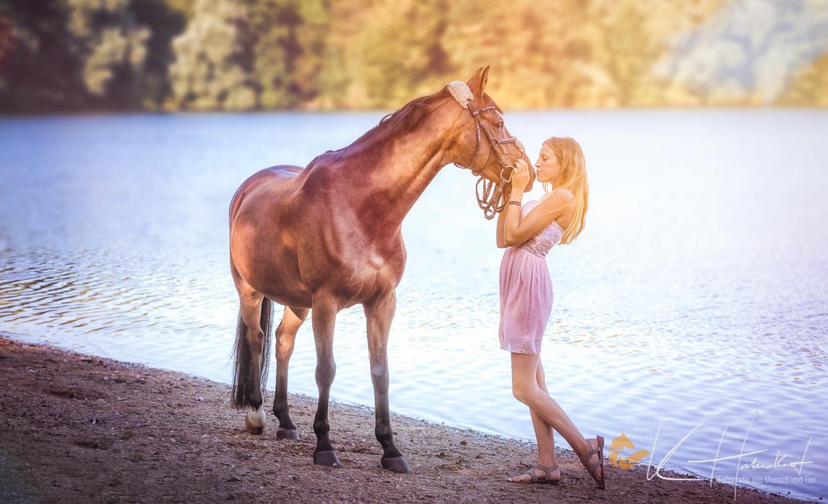 HORSEDREAMS KHPHOTO